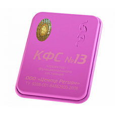 """KFS plošča št. 13 """"ZDRAV RAZUM"""""""